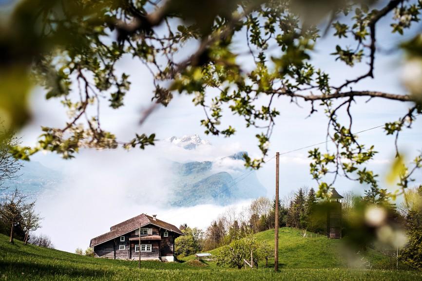 Landscape over the Lake Lucerne